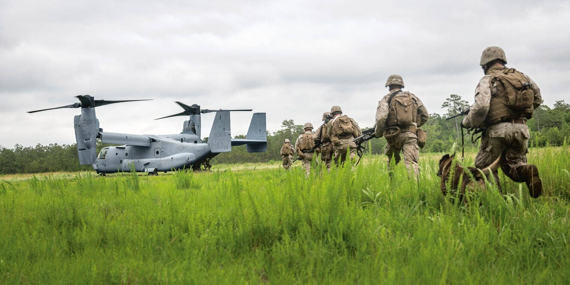 Web_Hero-11-NOVEMBER_Sub1_MV-22_18622692446_1baef34f91_o